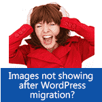 WordPress Images not Showing up after Migration