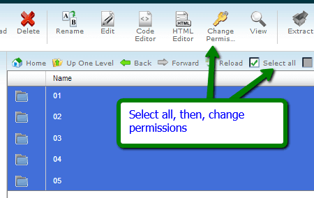 Change images file permissions