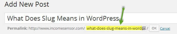 What Does Slug Means in WordPress
