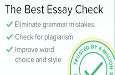 Essay checker software
